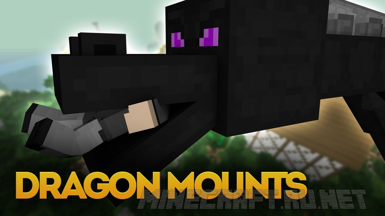 Minecraft Dragon Mounts