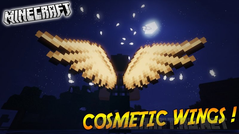 Minecraft Cosmetic Wings