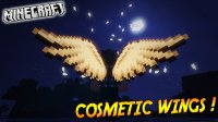 Cosmetic Wings - Mods